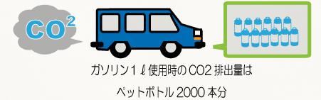 leaf_01-01.jpg